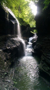 Watkins Glen State Park is one of the many nearby state parks worth exploring!