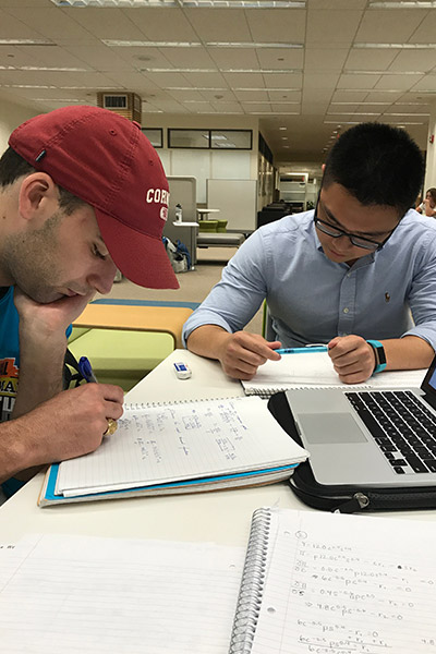 Students working together in Mann Library