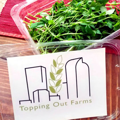 Package of Top of the Hill micro greens