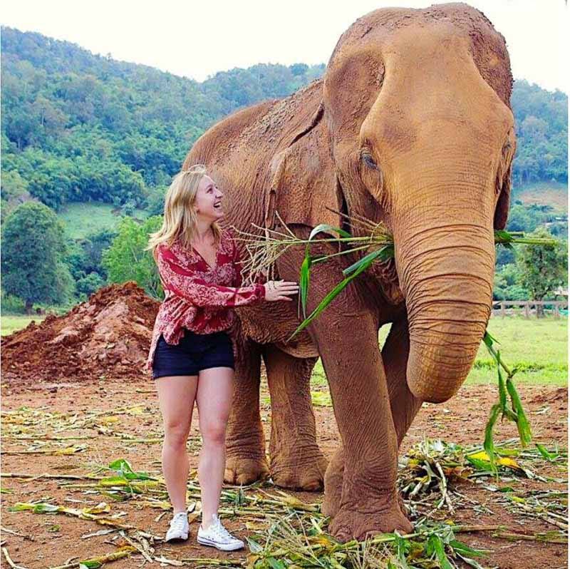 Photo of Elyse feeding an elephant with hills in the background