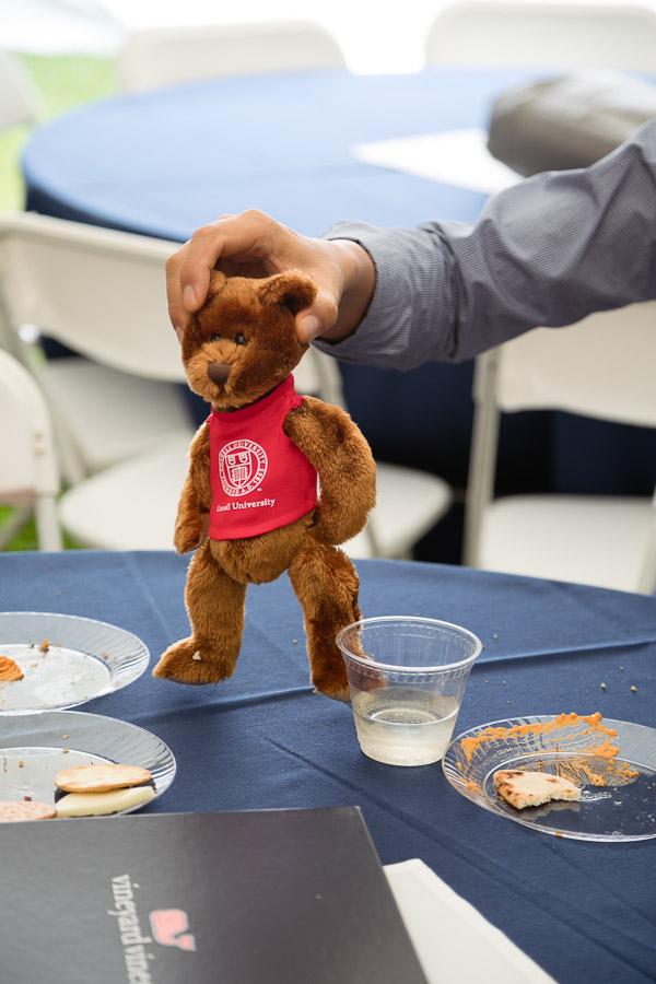 Photo of a stuffed Cornell bear
