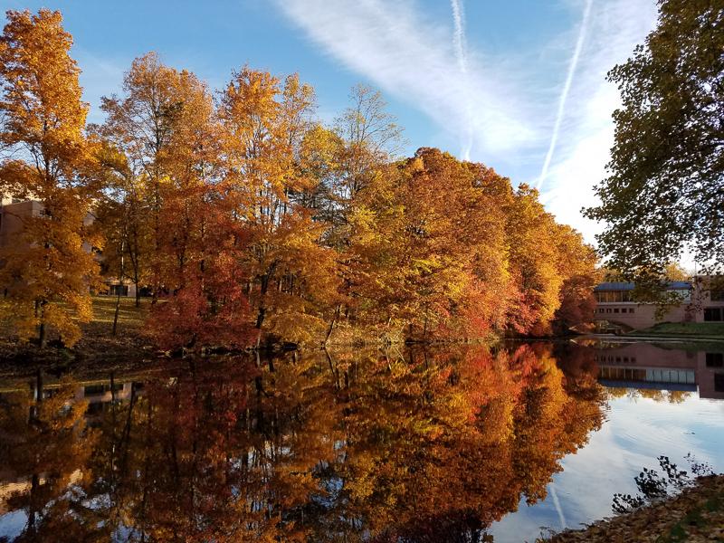 Autumn scenery at Palisades
