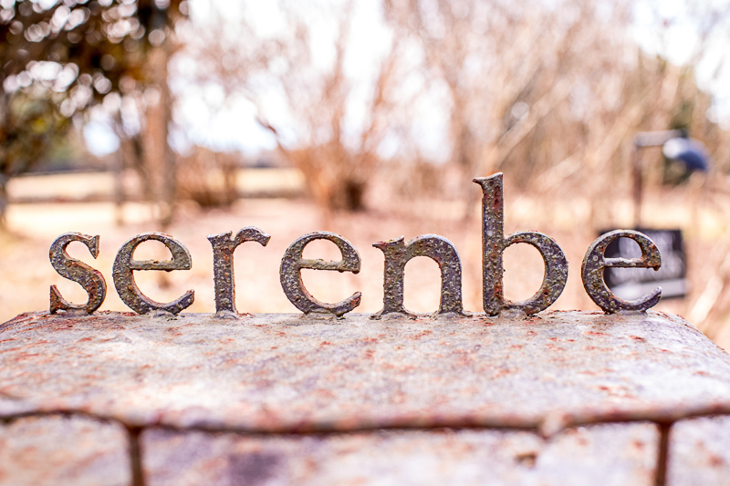 """Sign that says """"serenbe"""""""