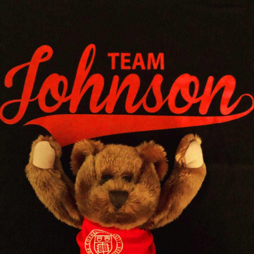 Stuffed teddy bear wearing a Cornell shirt