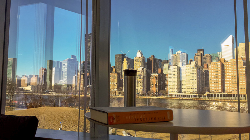 View from the Cornell Tech campus