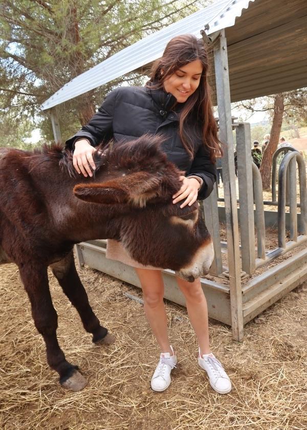 Student petting donkey