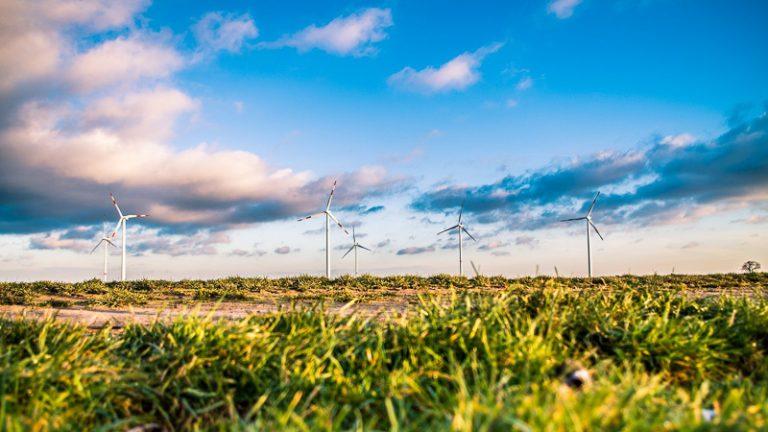 Wind farm panoramic