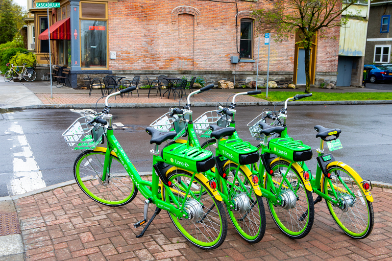 Line of Lime Bikes on Ithaca street