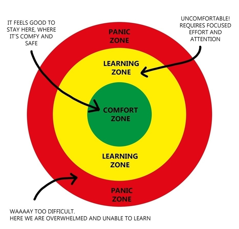 Diagram of concentric circles depicts the Panic Zone in red, the Learning Zone in orange and the Comfort Zone in green.